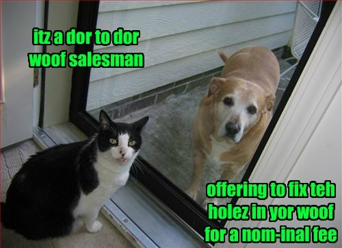 itz a dor to dor woof salesman offering to fix teh holez in yor woof for a nom-inal fee
