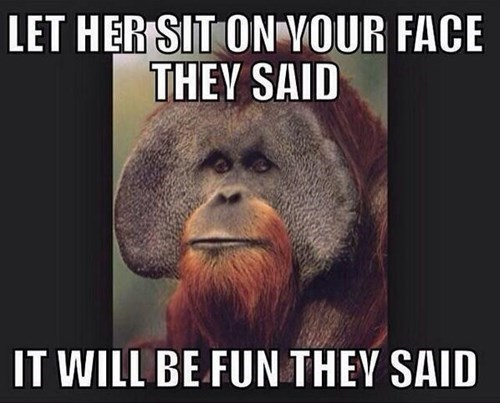 face sexy times funny sitting - 8256555776