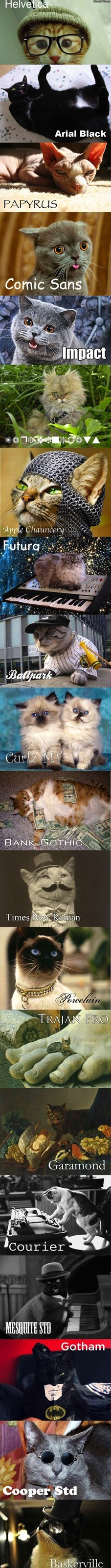 Cats fonts - 8256559872