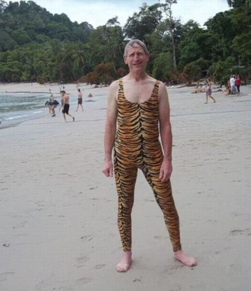 beach,poorly dressed,tiger,skintight