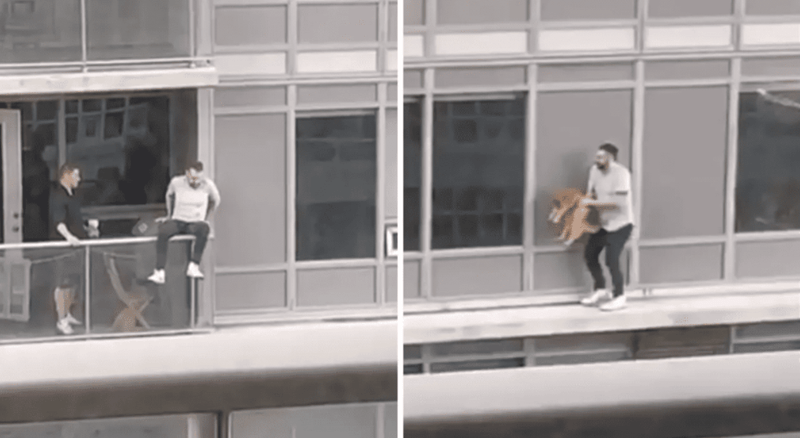 man rescues a cat in a tall building