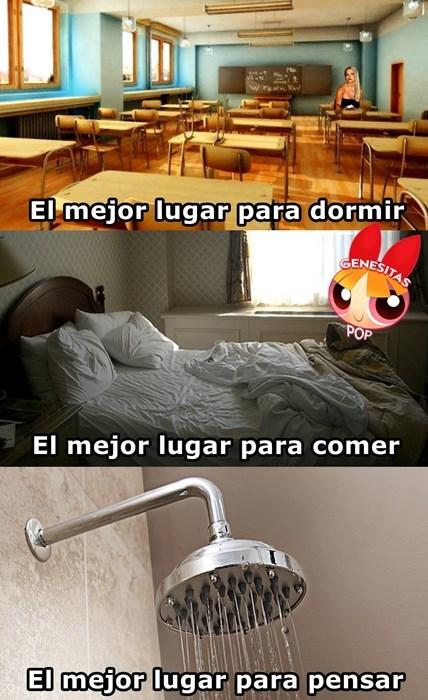 Memes fotos bromas - 8257276672