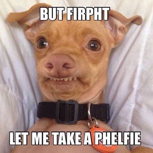 dogs,lisp,selfie