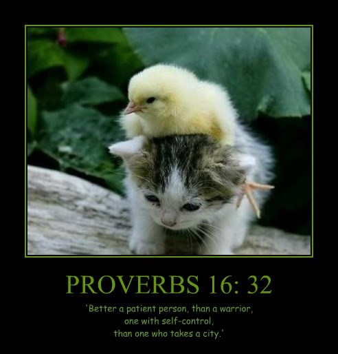 PROVERBS 16: 32 'Better a patient person, than a warrior, one with self-control, than one who takes a city.'