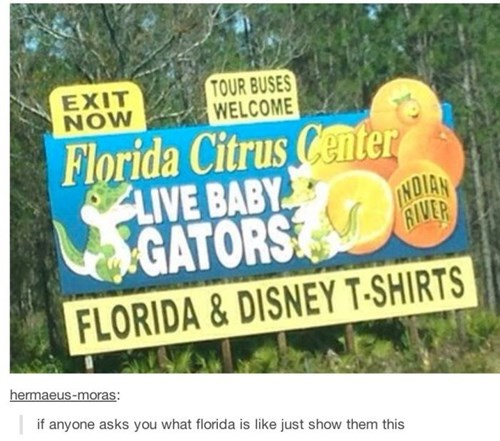 florida sign weird failbook g rated - 8257725952