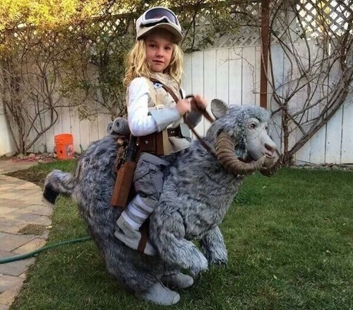 cosplay,kids,tauntaun