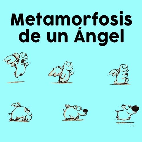 viñetas perros animales - 8258489856