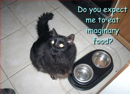 Do you expect me to eat imaginary food?