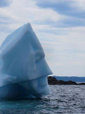 batman iceberg - 8258608128