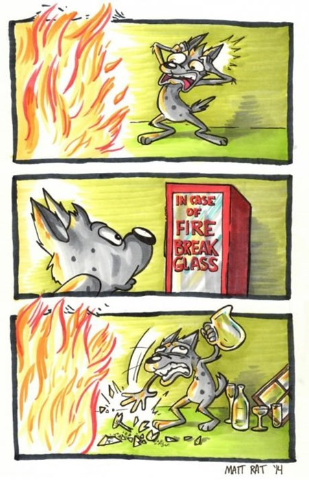 fire,puns,idiots,web comics