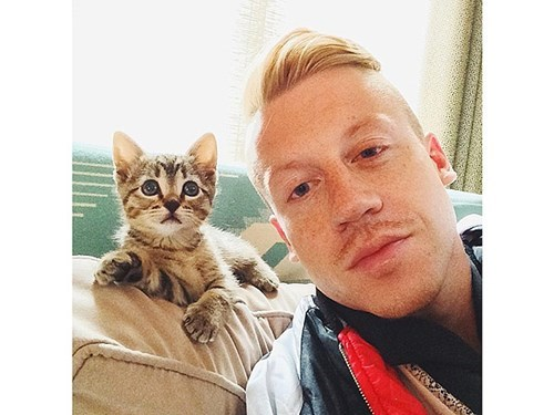 cat people,people pets,Macklemore,celeb,Cats