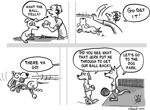 dogs tennis web comics