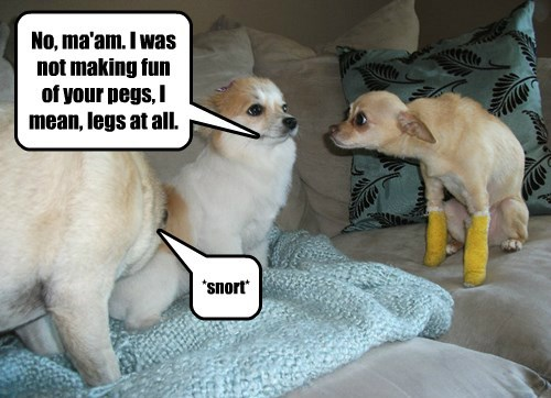 No, ma'am. I was not making fun of your pegs, I mean, legs at all. *snort*