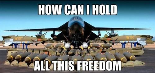 freedom - 8261735168