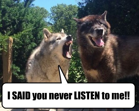 angry dogs relationships - 8261799936