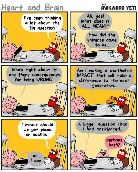 stomach brains hearts food questions web comics