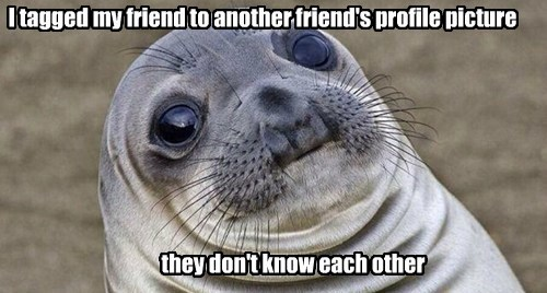 awkward seal facebook funny - 8262797056