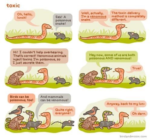 critters poison Venom snakes toxic web comics - 8262822656