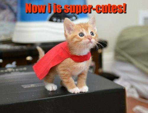 Now i is super-cutes!