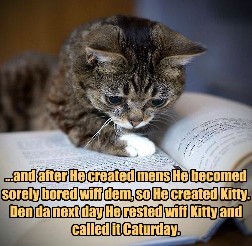 ...and after He created mens He becomed sorely bored wiff dem, so He created Kitty. Den da next day He rested wiff Kitty and called it Caturday.