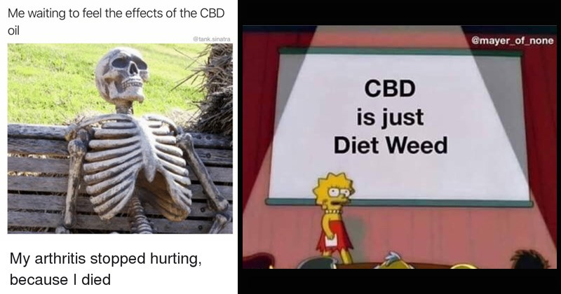 14 Sassy Cbd Memes That Prove The Craze Is Getting Way Out Of Hand