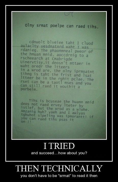 funny idiots smart wtf - 8264024576