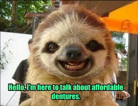 dentures smiling sloths funny - 8264091136