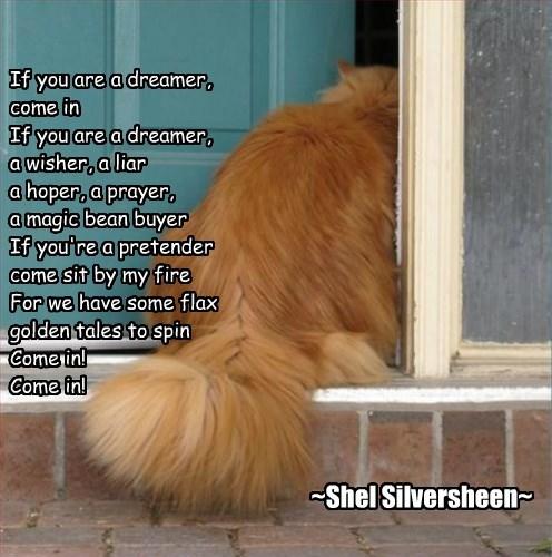 Cheezburger Image 8264130304