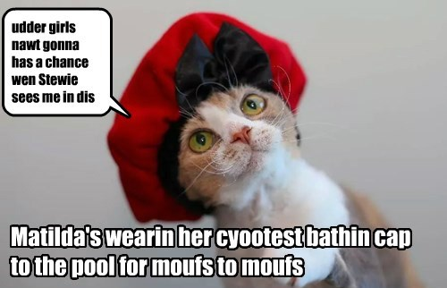 shower cap,cute,Cats
