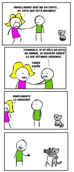 Memes viñetas bromas - 8264209152