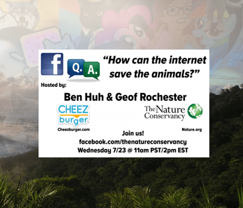 geof rochester q&a save the animals nature conservacy q&a q&a q&a q&a - 8265053952