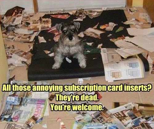 dogs destroy funny magazines - 8265210112