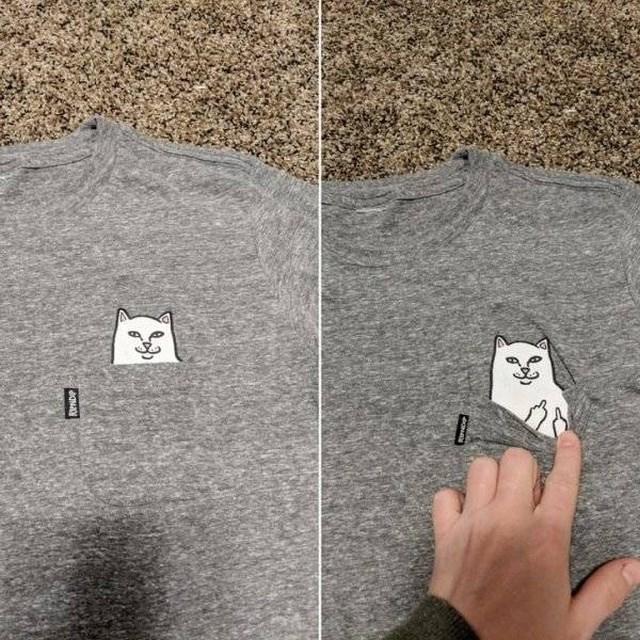 t-shirt of a cat
