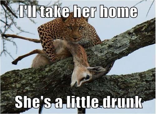 Funny Drunk Meme Pictures : I'll take her home she's a little drunk cheezburger funny memes
