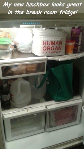 monday thru friday lunchbox refrigerator fridge break room g rated - 8266277888