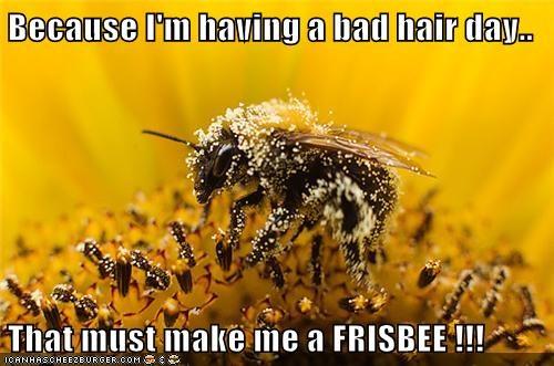 bees,hair,puns