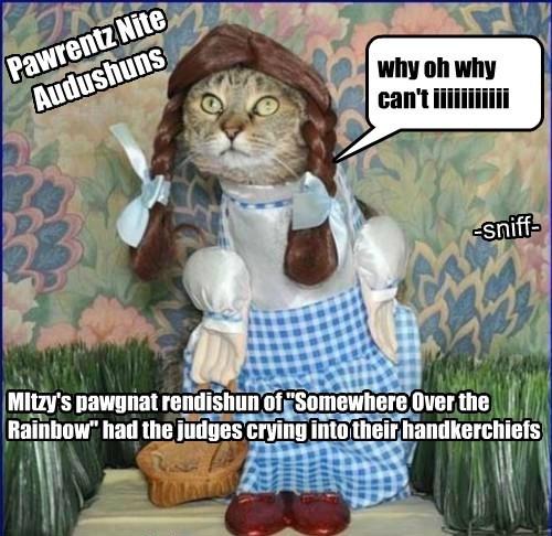 "why oh why can't iiiiiiiiiii MItzy's pawgnat rendishun of ""Somewhere Over the Rainbow"" had the judges crying into their handkerchiefs Pawrentz Nite Audushuns -sniff-"