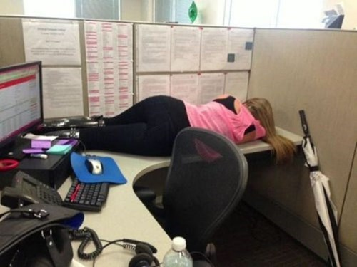 cubicle,monday thru friday,nap,g rated