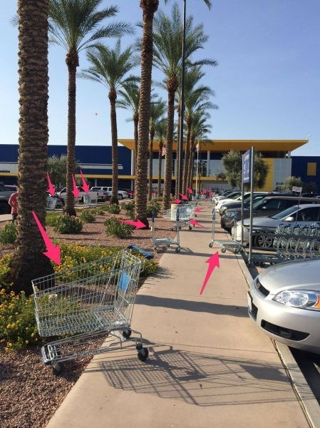 grocery store monday thru friday parking lot shopping cart - 8267435520