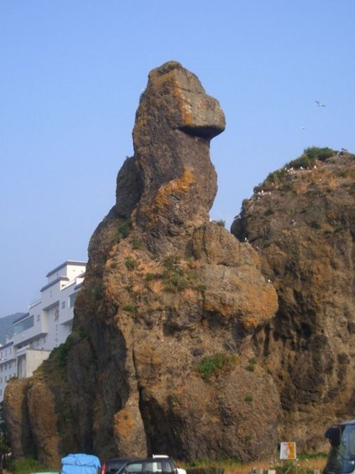 mother nature ftw,godzilla,totally looks like