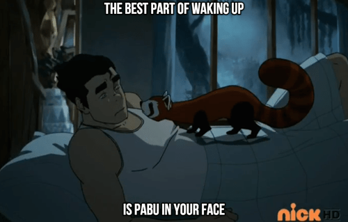 pabu cartoons Avatar korra - 8267700224
