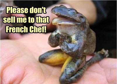 Please don't sell me to that French Chef!