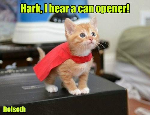 Hark, I hear a can opener! Belseth
