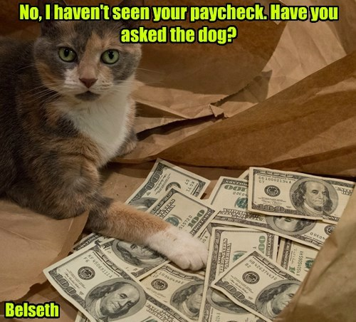No, I haven't seen your paycheck. Have you asked the dog? Belseth