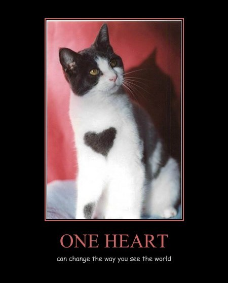 ONE HEART can change the way you see the world