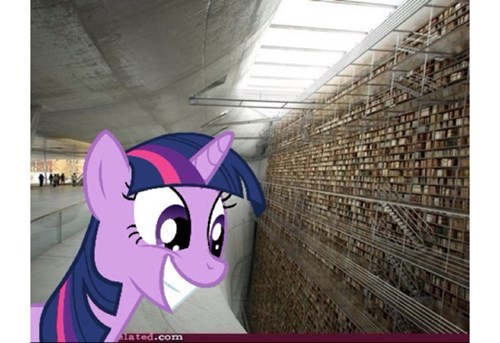 twilight sparkle,library