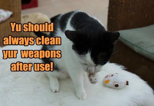 Cats cute hunting - 8269296640