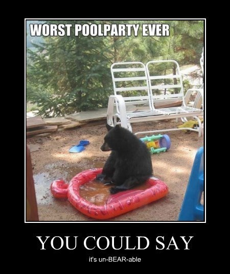 unbearable,puns,bear,funny