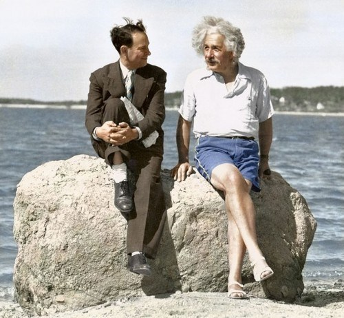 shorts,summer,albert einstein,casual