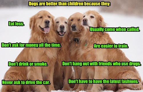 Dogs are better than children because they: Eat less. Usually come when called. Are easier to train. Don't ask for money all the time. Don't drink or smoke. Don't hang out with friends who use drugs. Never ask to drive the car. Don't have to have the latest fashions.